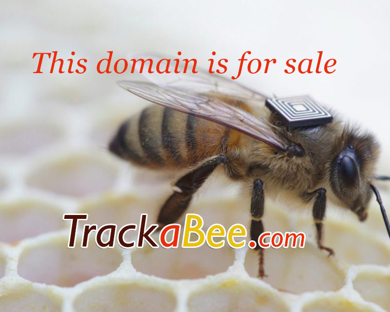 Track a bee (TrackABee.com Domain for Sale)