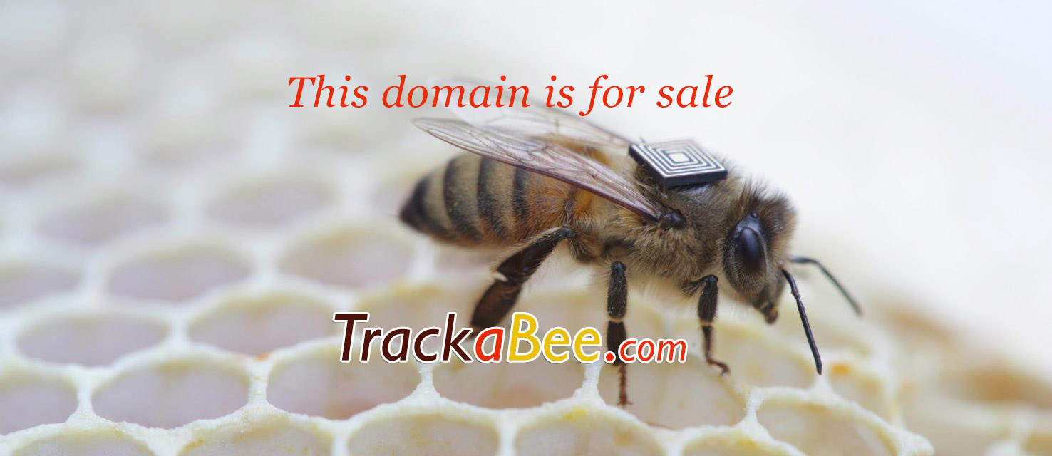 Track A Bee - Domain Name for sale